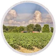 Round Beach Towel featuring the photograph Cotton Hasn't Flowered Yet by Jan Amiss Photography