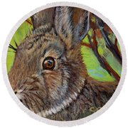 Cotton Tail Rabbit Round Beach Towel