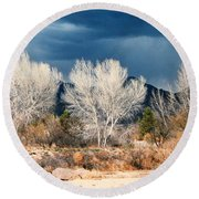 Cottonwoods In Winter Round Beach Towel