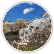 Cougar From Above Round Beach Towel by Walter Colvin