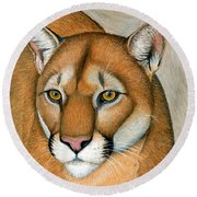 Cougar Portrait Round Beach Towel