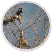Round Beach Towel featuring the photograph Courtship Ritual Of The Great Blue Heron by David Bearden
