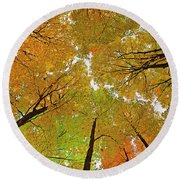 Round Beach Towel featuring the photograph Cover Up by Tony Beck