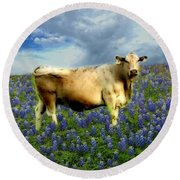 Round Beach Towel featuring the photograph Cow And Bluebonnets by Barbara Tristan