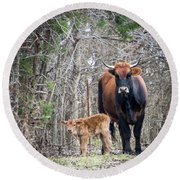 Cow And Calf Round Beach Towel