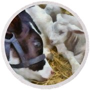 Cow And Lambs Round Beach Towel