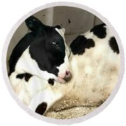Cow Cutie Round Beach Towel