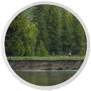 Cow Elk On The Riverbank Round Beach Towel