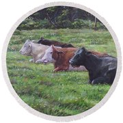 Cow Line Up In Field Round Beach Towel