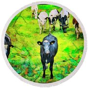 Round Beach Towel featuring the photograph Cow Patch by Craig J Satterlee
