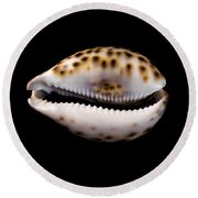 Cowry Sea Shell Round Beach Towel