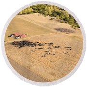 Cows And Trucks Round Beach Towel