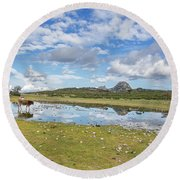 Reflected Cows  Round Beach Towel