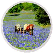 Round Beach Towel featuring the photograph Cows In Texas Bluebonnets by Kathy White