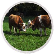 Round Beach Towel featuring the photograph Cows Nuzzling by Sally Weigand