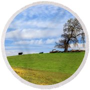Round Beach Towel featuring the photograph Cows On A Spring Hill by James Eddy