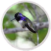 Coy Costa's Hummingbird Round Beach Towel