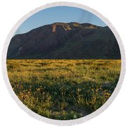 Coyote Mountain And Henderson Canyon Road Round Beach Towel
