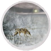Coyote On A Winter Night Round Beach Towel