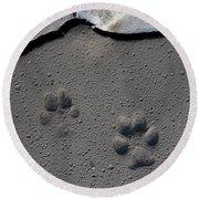 Coyote Tracks Round Beach Towel