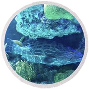 Cozy Resting Place Round Beach Towel