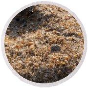 Crab Camoflage Round Beach Towel