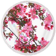Round Beach Towel featuring the photograph Crabapple Beauty by Rick Morgan