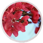Round Beach Towel featuring the photograph Crabapple Bees by Rick Morgan