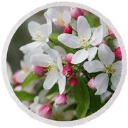 Crabapple Blossoms 12 - Round Beach Towel