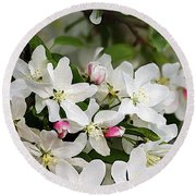 Crabapple Blossoms 13 - Round Beach Towel