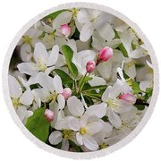 Crabapple Blossoms 5 Round Beach Towel