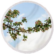 Round Beach Towel featuring the photograph Crabapple Blossoms  by TL Mair