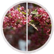Crabapple In Spring Panoramic Map Round Beach Towel