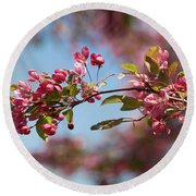 Crabapple In Spring Section 1 Of 4 Round Beach Towel