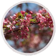 Crabapple In Spring Section 2 Of 4 Round Beach Towel