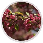 Crabapple In Spring Section 3 Of 4 Round Beach Towel