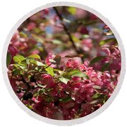 Crabapple In Spring Section 4 Of 4 Round Beach Towel