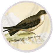 Crag Swallow Round Beach Towel by English School