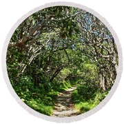 Craggy Gardens Walkway Round Beach Towel
