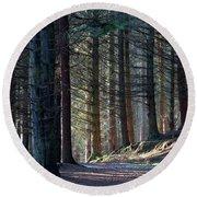 Craig Dunain - Forest In Winter Light Round Beach Towel