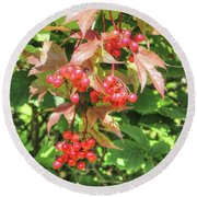 Cranberry Cluster Round Beach Towel