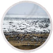 Round Beach Towel featuring the photograph Crane Dance by Torbjorn Swenelius