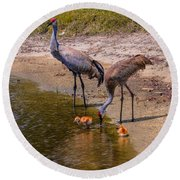 Cranes In The Lake Round Beach Towel