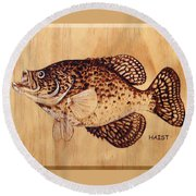 Crappie Round Beach Towel by Ron Haist