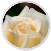 Cream Rose Kisses Round Beach Towel