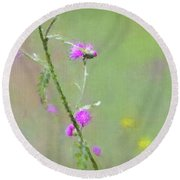 Creeping Thistle Round Beach Towel