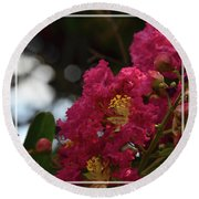 Round Beach Towel featuring the photograph Crepe Myrtle Flowering Tree by Debby Pueschel
