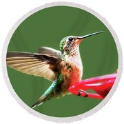 Crested Butte Hummingbird Round Beach Towel