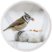 Crested Tit's Catch A Peanut Round Beach Towel
