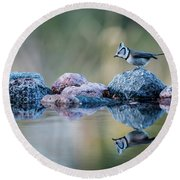 Crested Tit's Reflection Round Beach Towel